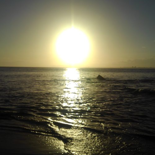 江ノ島サンセット