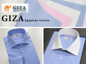 GIZA cotton