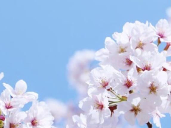 春の日差しが待ち遠しい