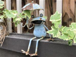 May be it is rainyseason